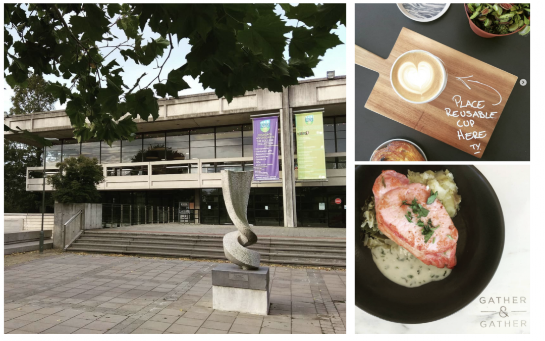 Gather & Gather Takes up Food Residency on UCD Campus