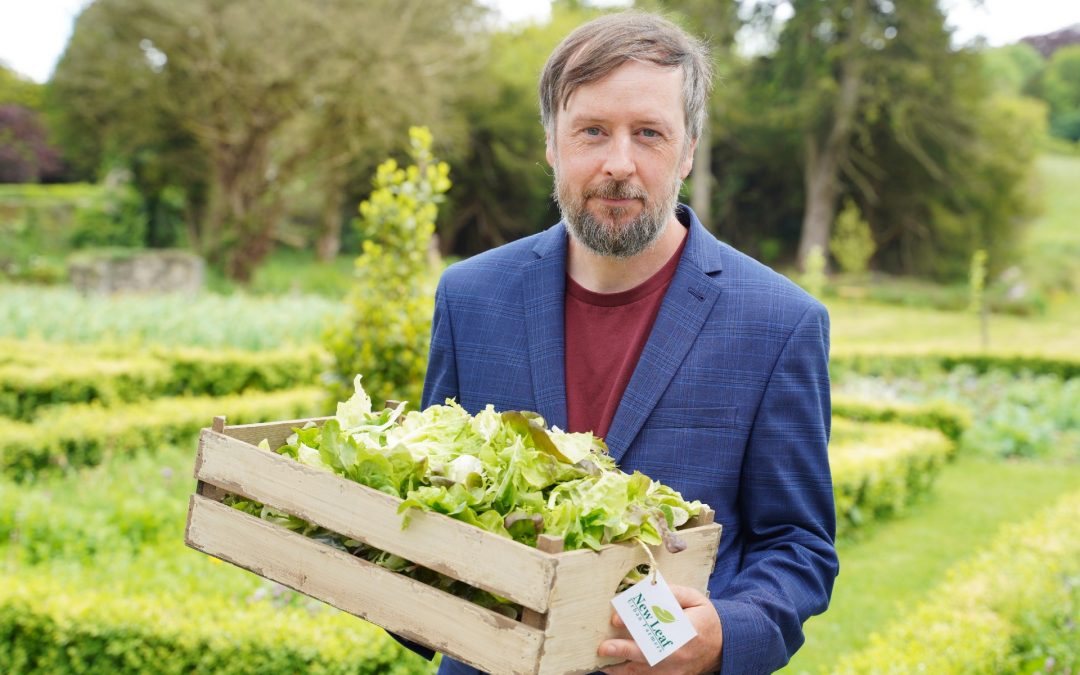 New Leaf Urban Farmers Launches Vegetable Box Scheme