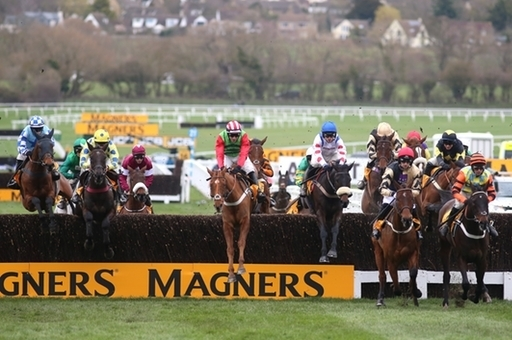 Will An Irish-Trained Horse Win The Gold Cup This Year?