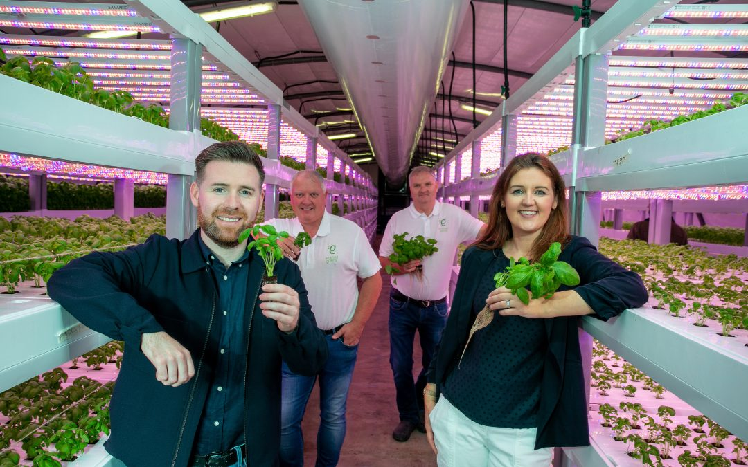 Compass Group Ireland Signs Deal with Hydroponic Vertical Farm