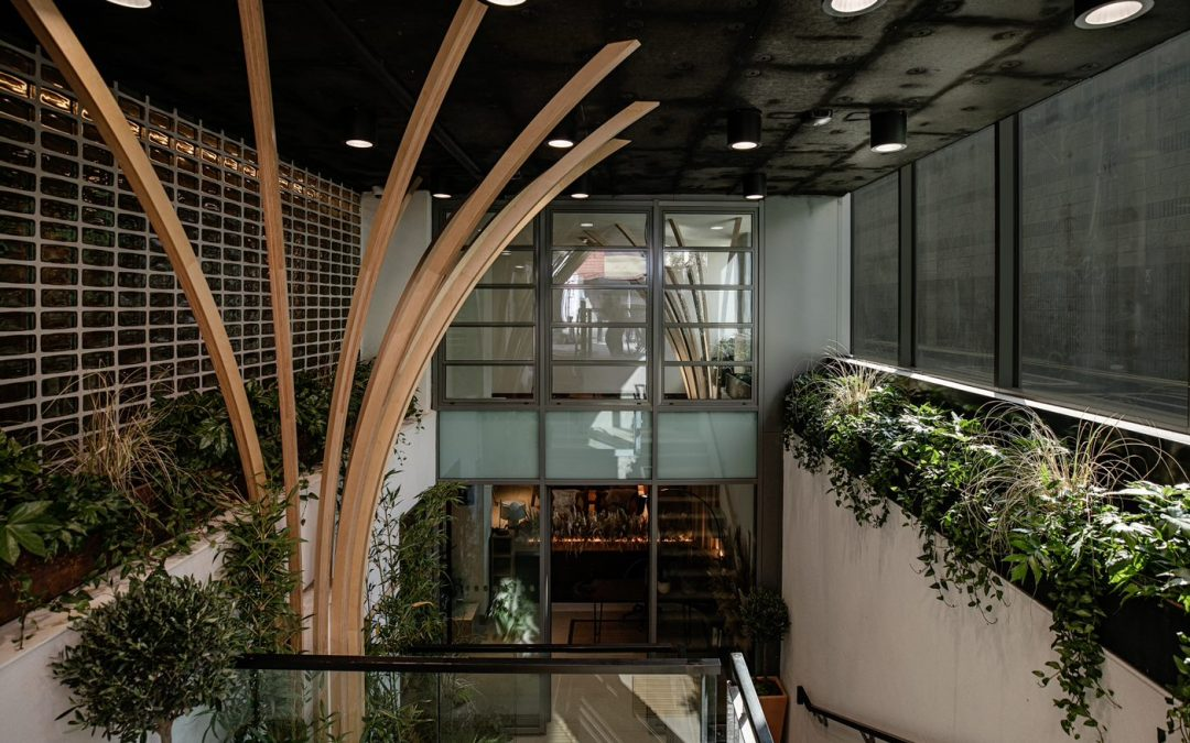Wren Urban Nest on a Mission to be Ireland's Most Sustainable Hotel